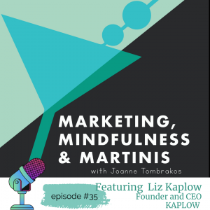 How Liz Kaplow, Founder and CEO  of Kaplow Has Been Changing Conversations Since Day 1: Episode #35